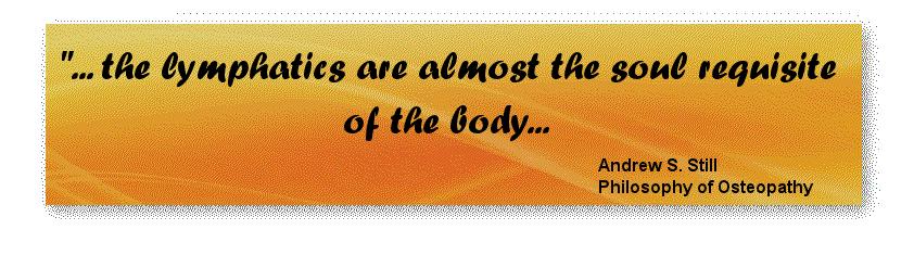 lymphatics quote